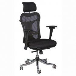 Ergo EX High Back Desk Chair